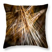 Bounty Of Barley Throw Pillow