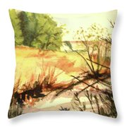 Bouquet Canyon Wash 2 Throw Pillow