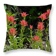 Bouquet Of Paintbrushes Throw Pillow