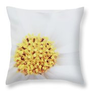 Bouquet Of Stars Throw Pillow