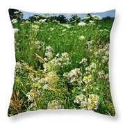 Bouquet Of Wildflowers Along Country Road In Mchenry County Throw Pillow