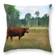 Bovine Bliss Throw Pillow