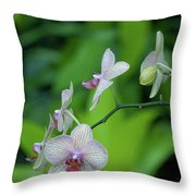 Bowersox Throw Pillow