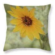 Bowing To The Sun Throw Pillow