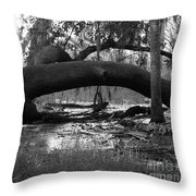 Bowing Under Pressure Throw Pillow
