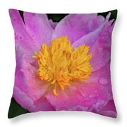 Bowl Of Beauty Peony Catching The Rain Throw Pillow