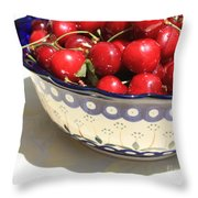 Bowl Of Cherries With Shadow Throw Pillow