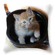 Bowlful Of Kitten Throw Pillow
