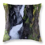 Box Canyon  Throw Pillow