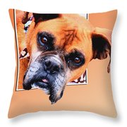 Box Out Of Box Throw Pillow