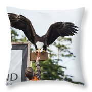 Boy Feeds Mr. Bald Eagle Throw Pillow
