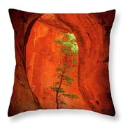 Boynton Canyon 04-343 Throw Pillow