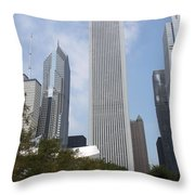 Bp Bridge View Throw Pillow