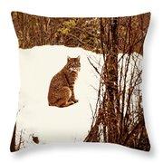 Bobcat In Snow Throw Pillow