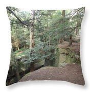 BR3 Throw Pillow
