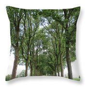Brabant Road Throw Pillow