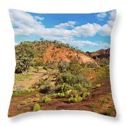 Bracchina Gorge Flinders Ranges South Australia Throw Pillow