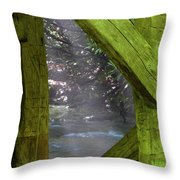Braced With Moss Throw Pillow