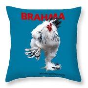 Brahma Breeders Rock Red Throw Pillow
