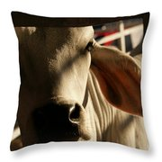Brahma Love Throw Pillow