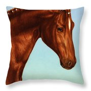 Braided Throw Pillow by James W Johnson