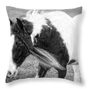 Braids In Mane B/w Throw Pillow