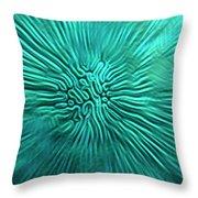 Brain Coral Throw Pillow