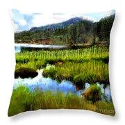 Brainard Lake Rocky Mountain National Park Throw Pillow
