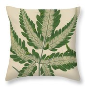 Brake Fern Throw Pillow