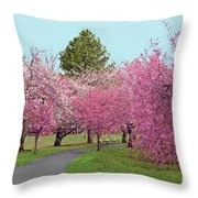Branch Brook Cherry Blossoms II Throw Pillow