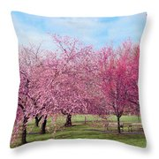 Branch Brook Cherry Blossoms Throw Pillow