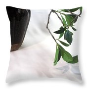 Branch, Gourd And Shadows Throw Pillow