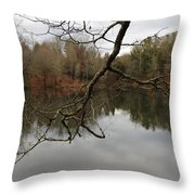 Branch And Water Throw Pillow