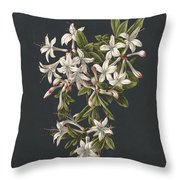 Branch Of A Flowering Azalea, M. De Gijselaar, 1831 Throw Pillow