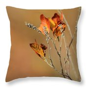 Branch Of Autumn Throw Pillow