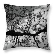Branch Patterns Throw Pillow