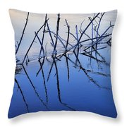 Branch Reflections 484 Throw Pillow