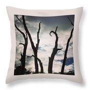 Branch Silouettes On Skeleton Beach Throw Pillow