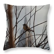 Branch With A View Throw Pillow