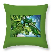 Branch With Green Fruit Throw Pillow