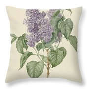 Branch With Purple Lilacs, Maria Geertruyd Barbiers-snabilie, 1786 - 1838 Throw Pillow