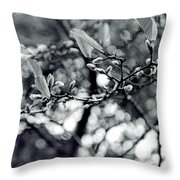 Branch With Seed Pods Throw Pillow