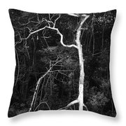 Branched Throw Pillow