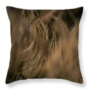 Branches 3407 Throw Pillow
