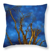 Branches Against Night Sky H Throw Pillow