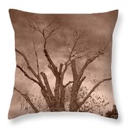 Branches Against Sepia Sky H   Throw Pillow