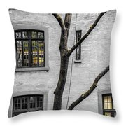 Branches And Windows Throw Pillow