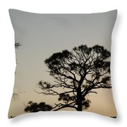 Branches In The Sunset Throw Pillow