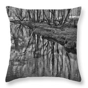 Branches Reflected In Yosemite Throw Pillow by Priya Ghose
