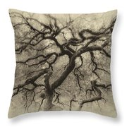 Branching Out In Autumn Antique Throw Pillow